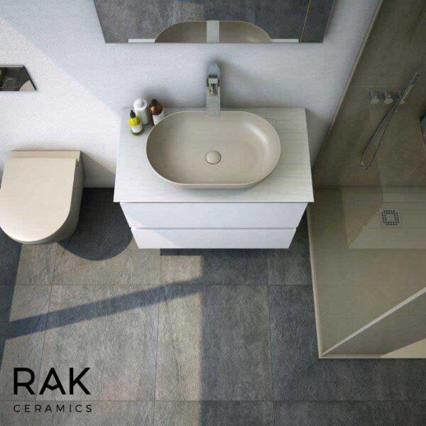 RAK Feeling basin and WC pan in cappuccino